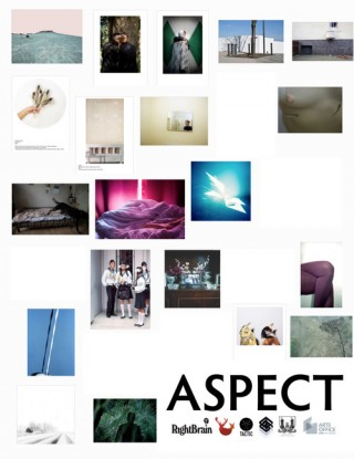 ASPECT  A Group Exhibition in Cork, Ireland as part of THERE THERE